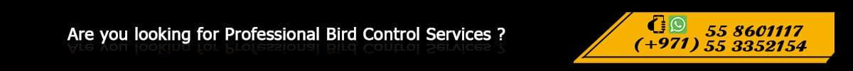 SBM Bird Control Contact