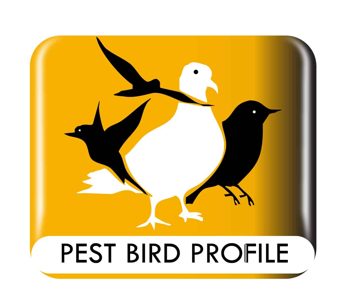 Pest Bird Profile