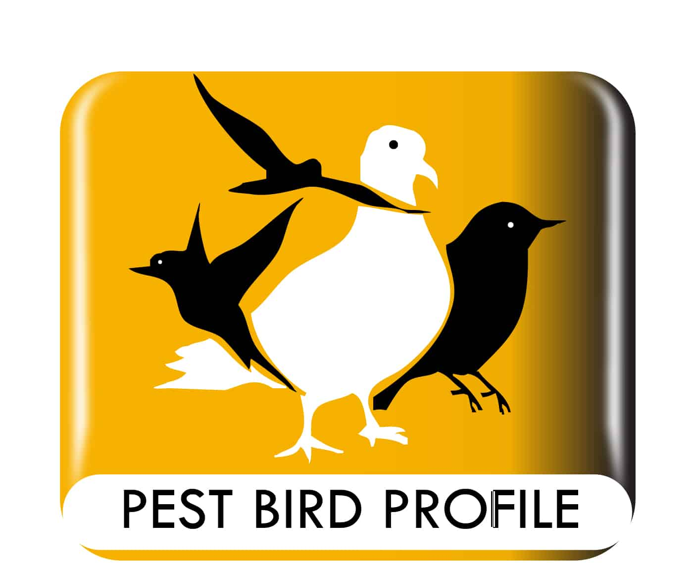 Pest Bird Profile