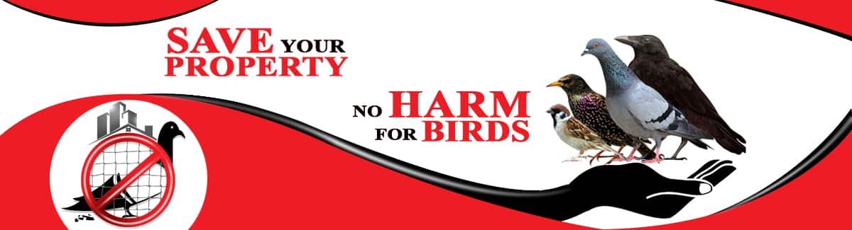About SBM Bird Control